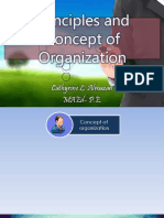 Principles and Concept of Organization