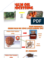 217184319 Palm Oil Processing