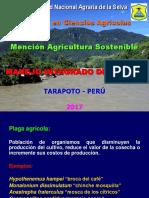 1 EPG MIP-As T 2017-II Generalidades