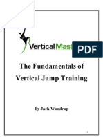 Vertical Mastery Training Guide