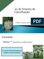 1 aula - Noções do Sistema de Classificação.pdf