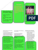 Educacion Primaria Intercultural y Bilingue