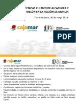 01 Material Vegetal y Fertilizacion en Alcachofa Carlos Baixauli Soria 1403249253