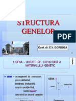 curs 3 MG structura genei oct 2010.ppt
