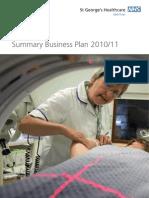 Summary Business Plan 2010 - 2011