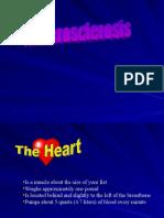 Islam Perspective on Heart Disease