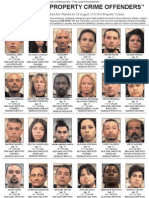Most Wanted Property Crime Offenders - August 2010