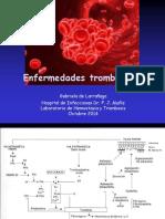2014  Octubre UDH trombosis.pdf