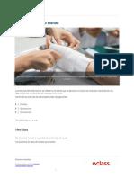 lesiones_del_tejido_blando-598c88c06fe00.pdf