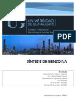 P11BENZOINA (1)