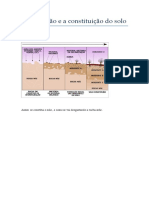 A formação e a constituição do solo.docx