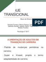 Slides Apresentação Enfoque Transicional