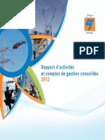 Rapport Activites Sonelgaz2012