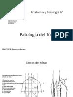 Patologias Del Torax Anatomia IV