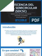 DEHISCENCIA DEL CANAL SEMICIRCULAR.pptx