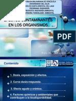 Efectos Contaminantes en Los Organismos