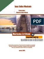 Machado-2005.-monticulos_artificiais-amazonia_central.pdf