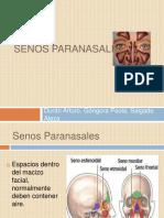 senosparanasales-121104213504-dsssdskjdskds