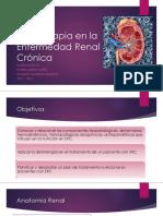 Dietoterapia en Patología Renales ML 2017 4 Octubre