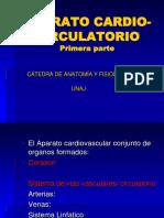 CIRCULATORIO 1