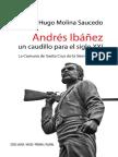 Andres Ibaniez