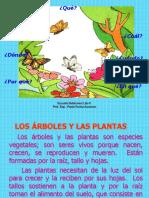 Los Árboles y Las Plantas