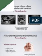 Patologia Pancreas Riñones y Bazo