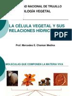 I - La Celula Vegetal y Sus Relaciones Hidricas
