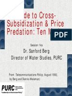 Guide to Cross- Subsidization & Price Predation_ Ten Myths