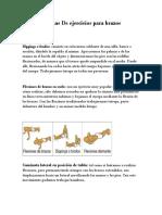 Rutinas de Ejercicios Para Brazos -Seccion 1