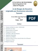 Tsunami_17_04_2017 (1).pdf