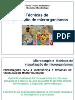 Aula 6 Técnicas de Visualização de Microrganismos