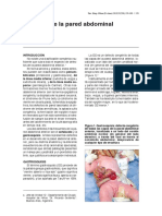 03 defectos-pared-abdominal 258