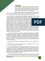 necrose_e_apoptose._pdf.pdf