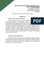 Producto 4 - Rey Patricio