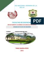 Informe Final de Pavos