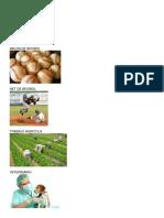 Cancha de Beisbol