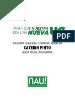 CT Ingeniería - Caterin Pinto