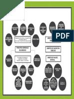 Mapa Mental Cart 7 y 8