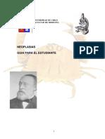 NEOPLASIA MORFOFISIOPATOLOGIA 1.pdf