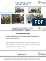EXPOSICION AGRICULTURa, GANADERIA. SILVILCULTURA