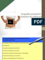 4.Ecografía Normal Del I Trimestre Del Embarazo