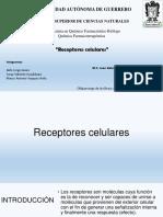 Receptores Celulares 2 (1)