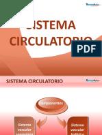 10. Sistema Circulatorio