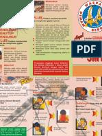 leafletdbd-111004094034-phpapp02