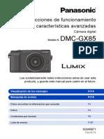 GX80 Manual Avanzado Castellano