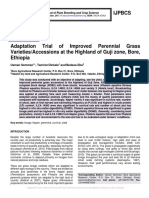Adaptation Trial of Improved Perennial Grass Varieties/Accessions at the Highland of Guji zone, Bore, Ethiopia