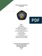 SAP Posyandu
