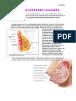 420-2014-02-27-Patologia mamaria.pdf