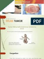 Wilm Tumor